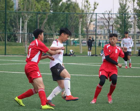 泰山足球小将冠军赛启动 带动校园足球竞赛氛围