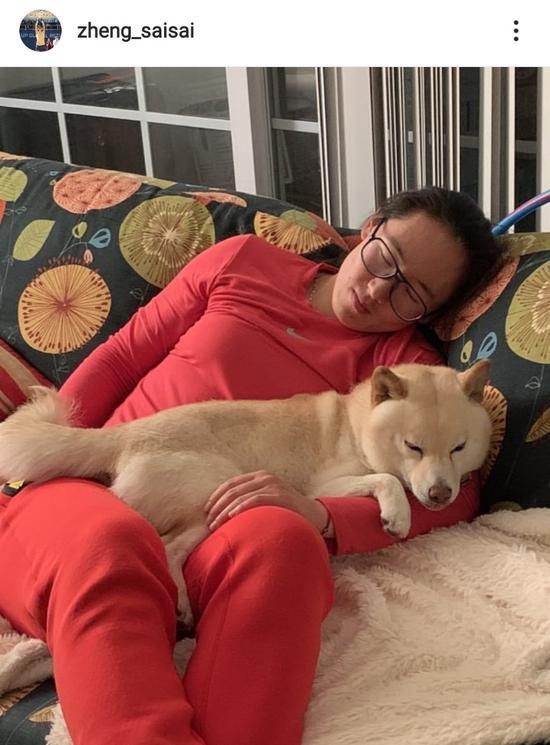 郑赛赛与喜欢犬元宝(图:球员外交媒体)