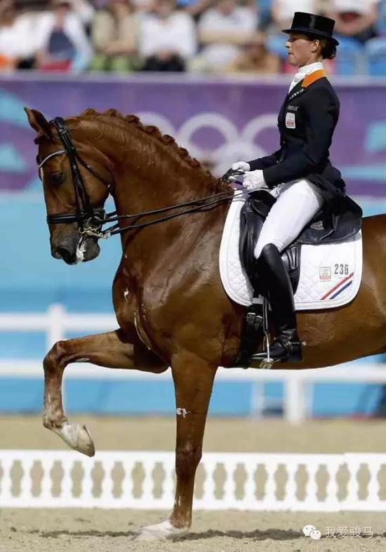 骑手头戴暗色礼帽,身着燕尾服。