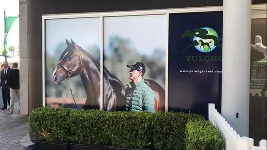 澳大利亚微妙百万黄金海岸周岁马拍卖会