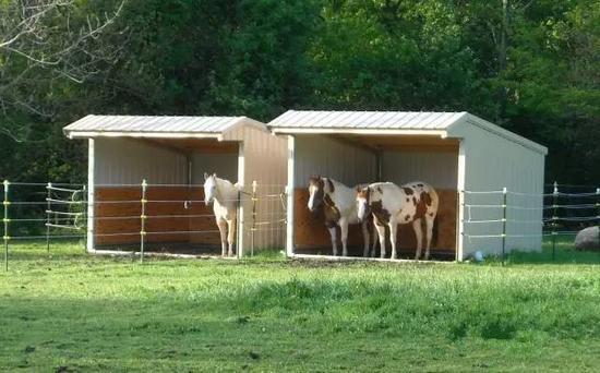 WWW_TUBEHOUND_COM_有专门给马用的产品,但在《horse and  hound》杂志的一篇文中提到,有
