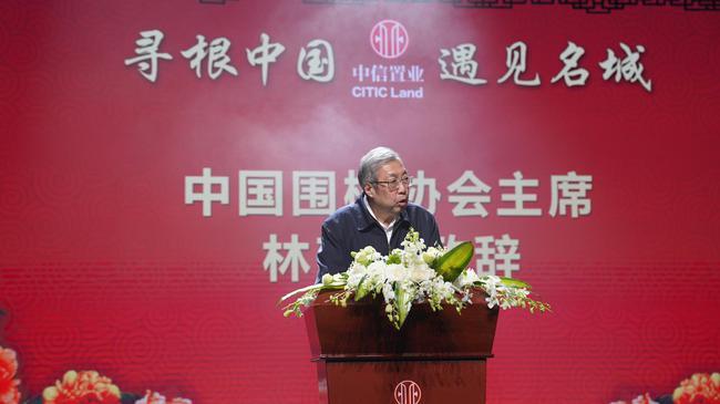 中国围棋协会主席林建超出席开幕式并致辞