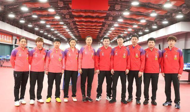 国乒世乒赛阵容