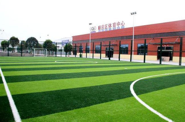 国办:支持体育场馆向社会免费或低收费开放