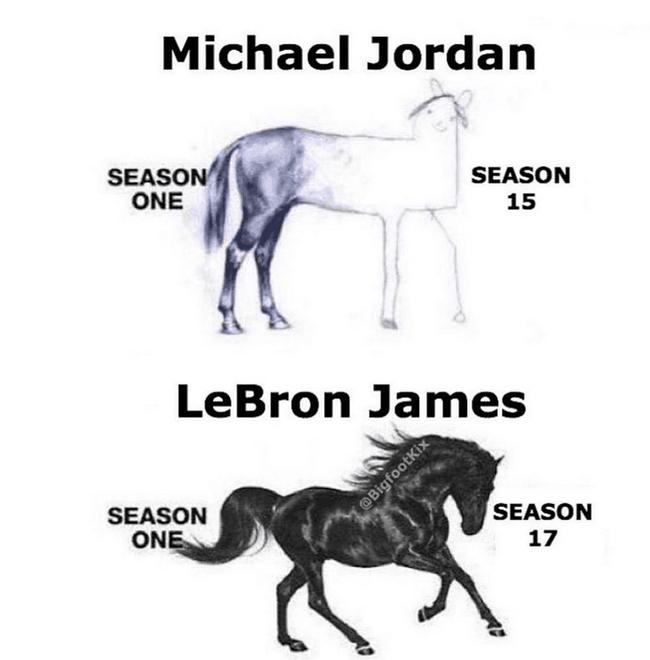 詹姆斯和乔丹生涯末年对比,看着两匹马就懂了!