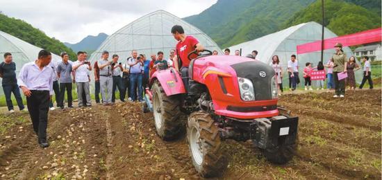 2018年6月26日,安康市马铃薯全程机械化生产现场会在镇坪县华坪镇团结村召开。资料照片