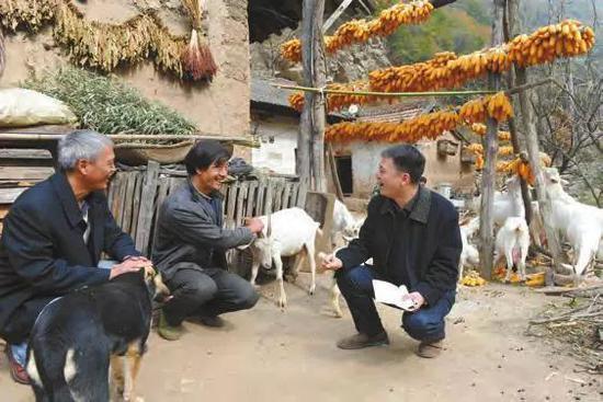 西安市碑林区选派的第一书记王党锋仔细询问贫困户养殖情况。资料照片
