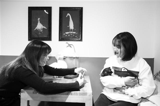 俩大二女生开萌宠咖啡馆 可抱鸭子拍照 可逗小香猪玩