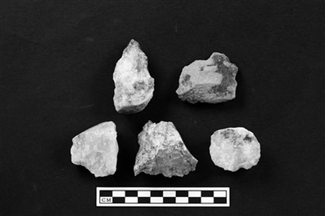 提供重要考古证据 秦岭地区首次发现早期现代人化石