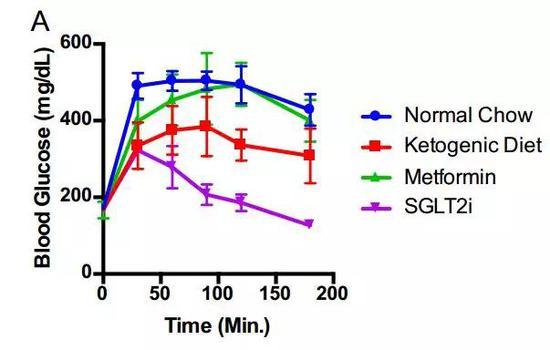 生酮饮食(绿)和SGLT2抑制剂(紫)降糖效果都不错