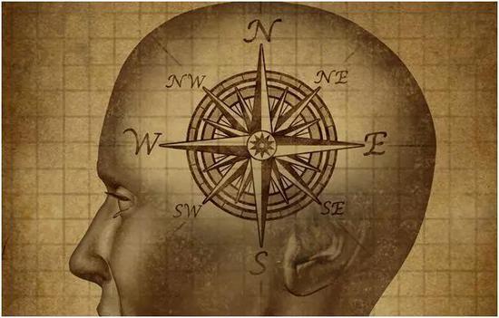 人类不仅能感应到磁场,而且大脑会对磁场变化作出强烈反应