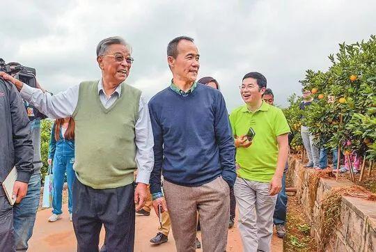 2014年褚时健陪王石一起参观橙园