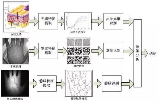 多光谱掌纹识别流程图