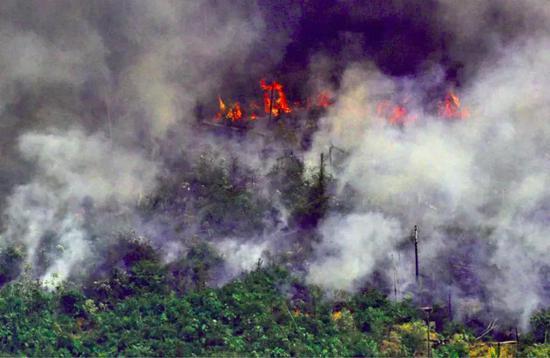 過去一個月,巴西的大火一直在肆虐。(攝影:Carl De Souza;來源:cnet.com)