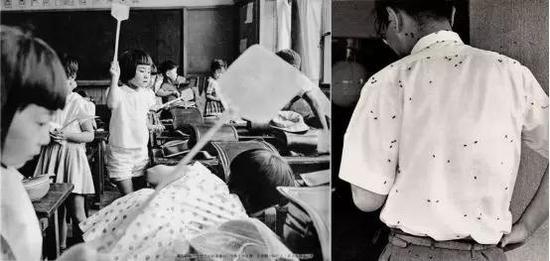 """50年代东京都江东区梦之岛作为垃圾填埋(堆放)地之一,号称""""苍蝇天国""""(图片来源:https://ja.wikipedia.org/wiki/ファイル:Minamisuna_1965.jpg"""