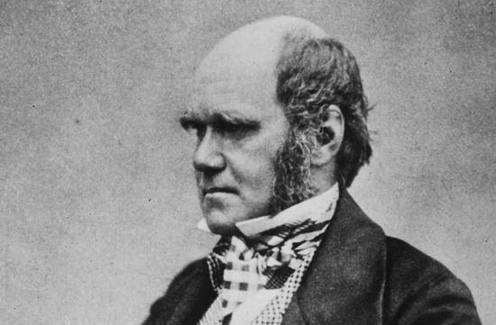 """人们眼中""""聪明绝顶""""的人物,达尔文便是其中一个  图片来源:(Wikimedia Commons)"""