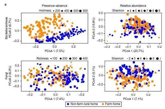 ▲农场室内灰尘和非农场室内灰尘的微生物多样性分析显示,前者包含更多样化的细菌,两者在真菌上的物种丰富度没有明显差别(图片来源:参考资料[1])