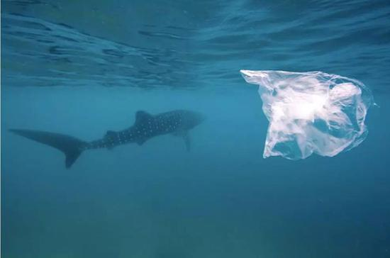 https://www.newsdeeply.com/oceans/articles/2017/10/09/report-microplastic-can-penetrate-fishs-brains-altering-behavior