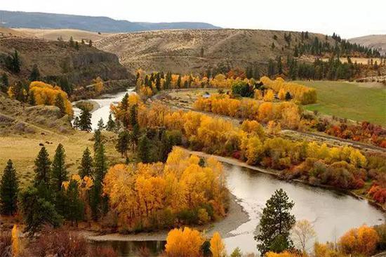 Yakima盆地 秋日盛景。图源 Tom Ring(CCL)