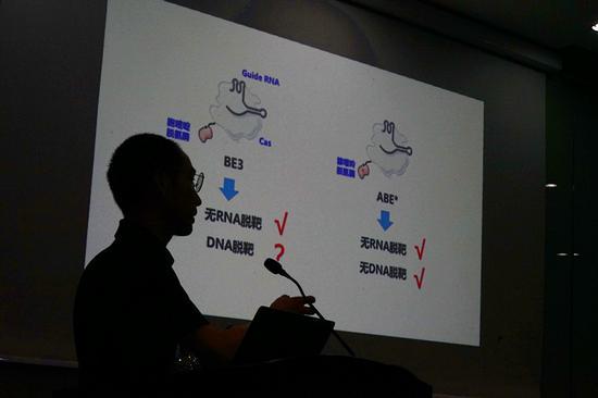 ▲楊輝在介紹新一代基因編輯