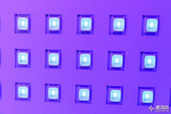华硕PA32UCX所用的Mini LED背光源