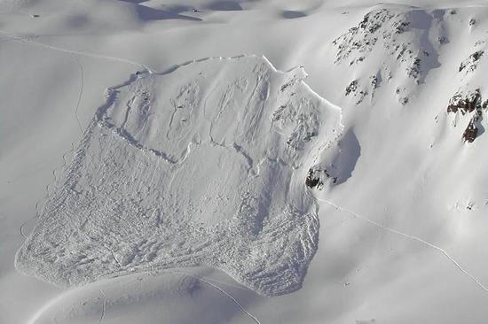雪崩痕迹举例,来自瑞士格里亚莱奇区域丨SLF