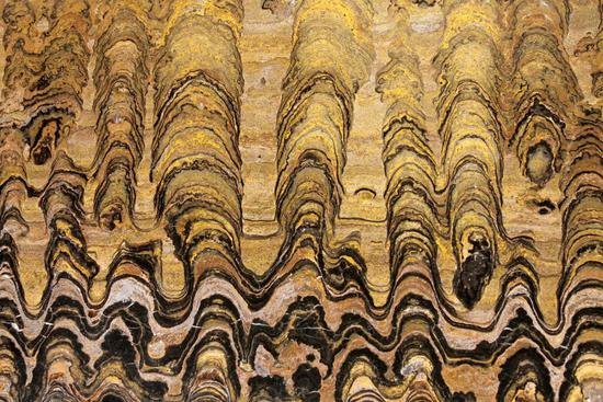 叠层石剖面