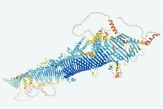 这是人工智能技术赋予的果蝇蛋白质形状,图片来自纽约时报