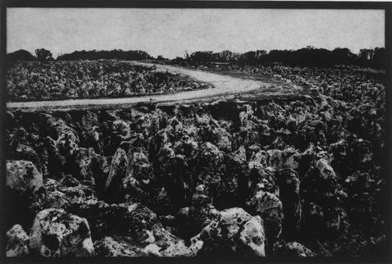 """被开采过后的瑙鲁地形呈锯齿状,瑙鲁人称这些地方为""""Topside"""",图源:Wayne Barrar"""