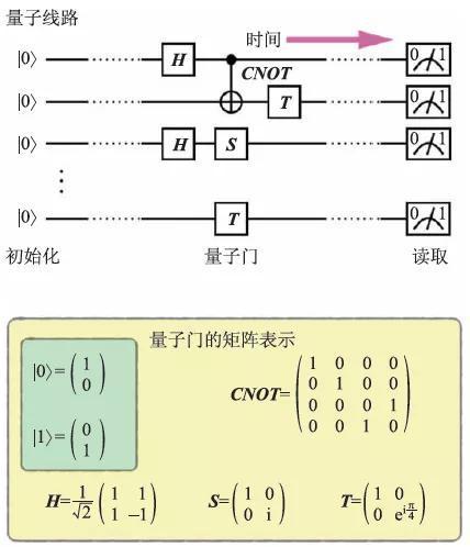 图1 量子线路和量子门。量子线路由量子比特的初始化、一组量子门以及最终的信息读取组成。其中的量子门可以由矩阵表示