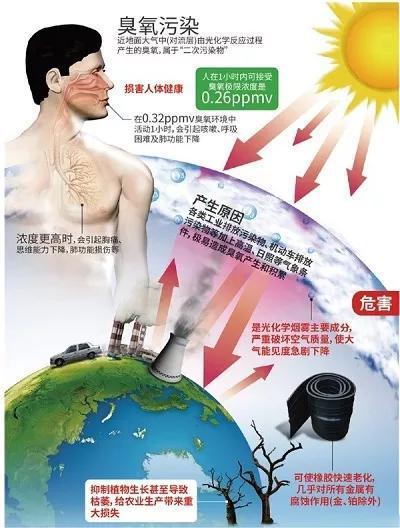 图2 臭氧的危害(引用自:近地臭氧有何危害、如何应对?来源:《科技生活》周刊  https://www.cdstm.cn/gallery/kjzd/201707/t20170725_536795.html)