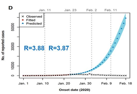 图十一:武汉封城前R值估计及感染人数预测