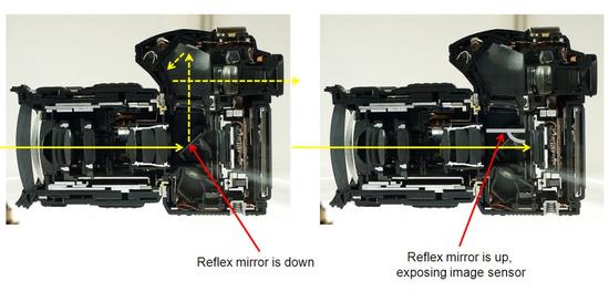 △单反相机取景时反光镜放下,光芒通过五棱镜落伍入照相师的眼睛。拍摄时反光镜抬起,光芒聚焦到传感器上(图片根源于收集)