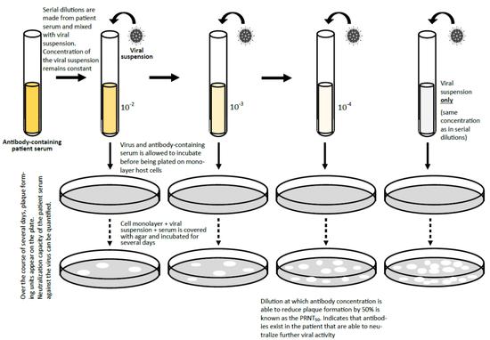 中和检测机理暗示图(图片来源:参考原料[4])