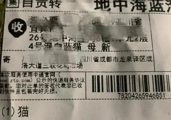 """無底線地營銷""""驚喜"""",盲盒經濟開始走向極端。/《北京青年報》"""