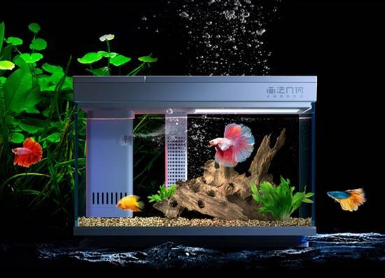 小米自动喂食鱼缸开卖 连接智能APP一键控制