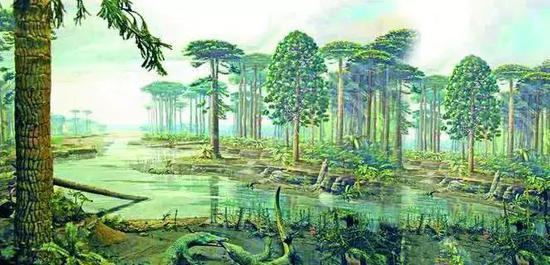 图2 远古的森林复原图