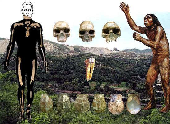 周口店挖出的不同人骨