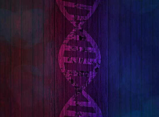 一个基因突变,让人变矮4厘米