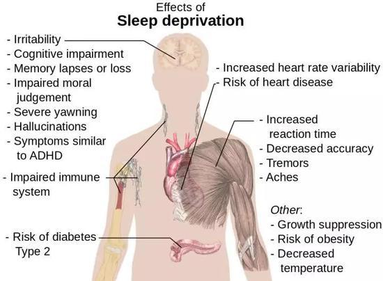 睡眠不足对健康的影响 图源:Wikipedia