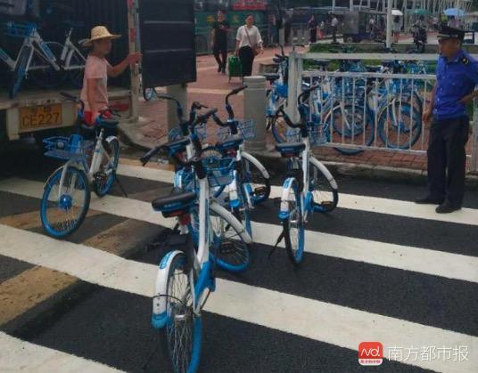 深圳市交委约谈哈罗:责令整改 清理回收单车