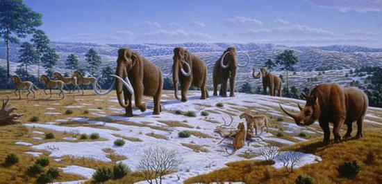▲猛犸象、披毛犀等史前巨型动物(图片来源:化石网)