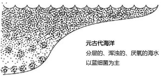 元古代海洋示意图(图片来源:南京古生物所)