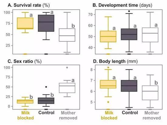 乳汁和永远抚育对子息成年指标的影响(图片来源:陈占首)