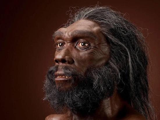 海德堡人的面部修正图,海德堡人是现代人、尼安德特人和丹尼索瓦人的一起先人的有力竞争者