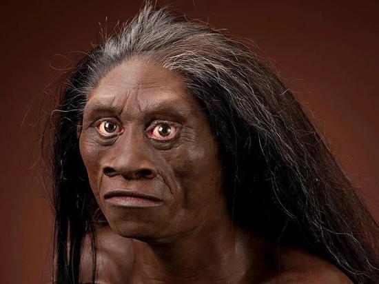 """弗洛雷斯人(绰号""""霍比特人"""")的面部重建图,这是一个低矮的人类物种,大约日子到5万年前"""