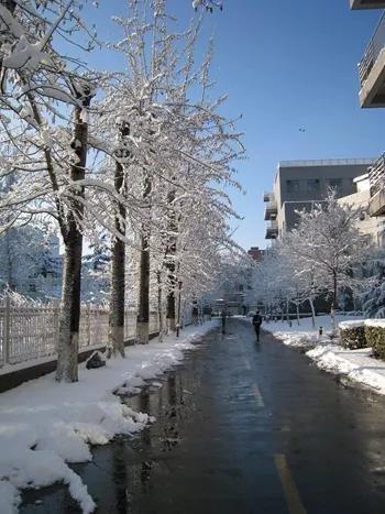 在这炎热到喘不动气的日子里看看雪景,不知道能不能降降温。