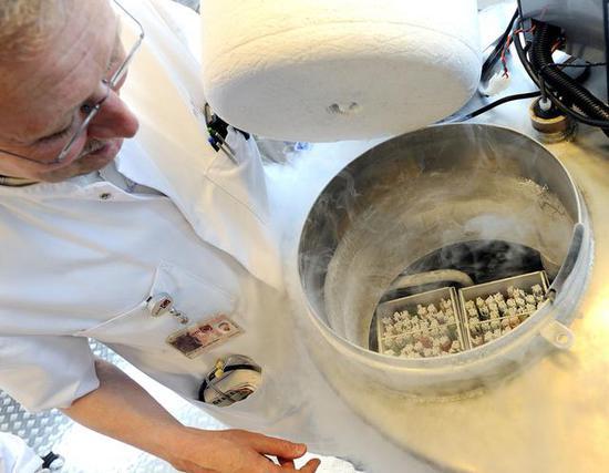 液氮在冻卵过程中首着专门重要的作用。( 图源:AFP)
