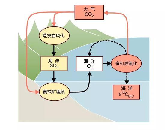 """蒸发岩风化与海洋有机碳库氧化的正反馈模型图,蒸发岩中的硫酸盐是地球氧化剂的""""蓄电池"""""""