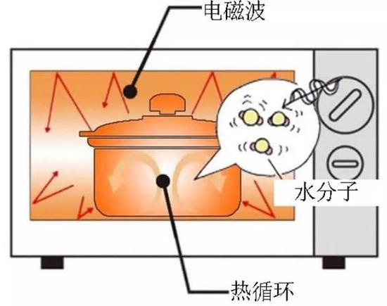 每次用微波炉前都要搜索它不能加热啥?